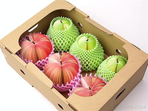 遊ぶ心あふれるフルーツのメモブロック「D-BROS フルーツメモ 」004