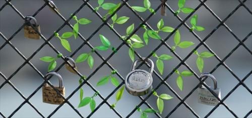 ケーブルがカワイイ木の枝に変身「Leaf Tie」005