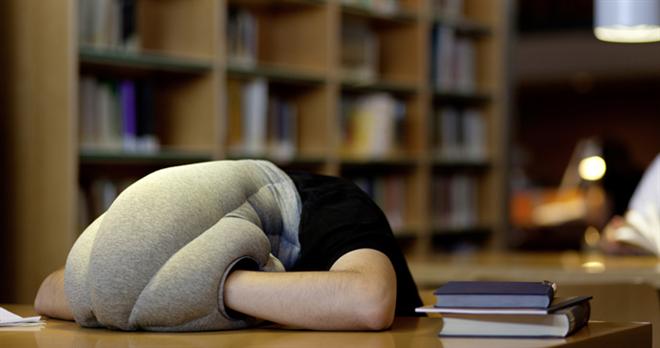頭の先から首まですっぽりかぶれちゃう枕 OSTRICH PILLOW002
