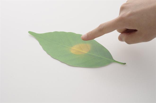 温度で変化する葉で壁を飾ろう Leaf サーモメーター002