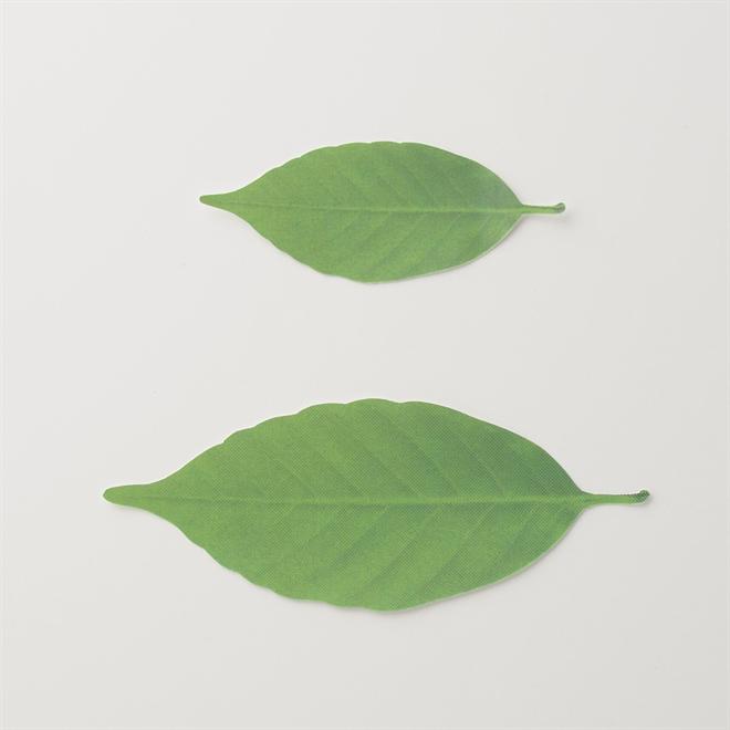 温度で変化する葉で壁を飾ろう Leaf サーモメーター004