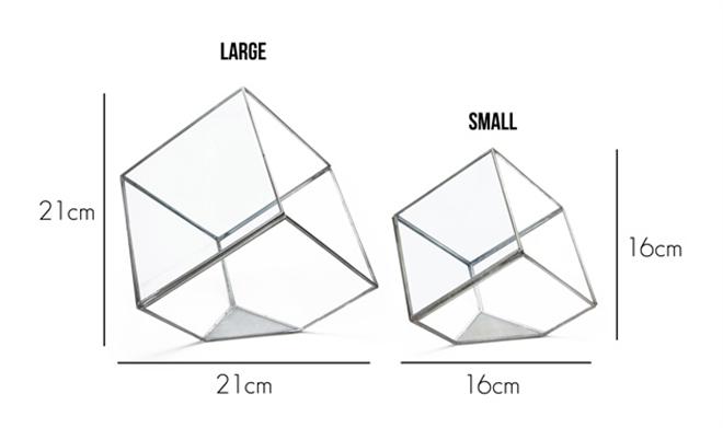 四角いガラスのテラリウム DETAIL GEO TERRARIUM003