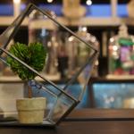 四角いガラスのテラリウム DETAIL GEO TERRARIUM