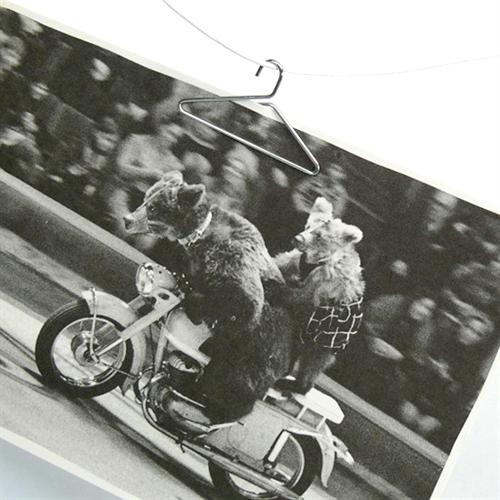 +d photo hanger003
